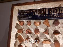 Ancien tableau stereometrique aide pédagogique scolaire fin XIX