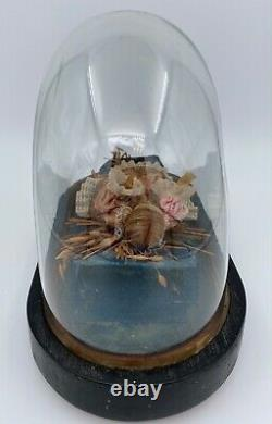 Poupee En Cire XIX Eme Dans Globe Napoleon III Cabinet De Curiosite M79